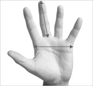 guide de taille gants